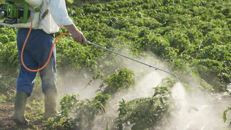Pesticiden.jpg#asset:35413:url