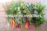 Onslogischvoedsel Logo