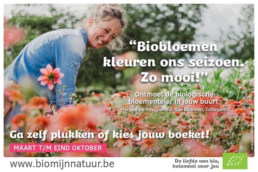 Bmn 2019 Bloemen Campagnebeeld Web2 9900000000079E3C