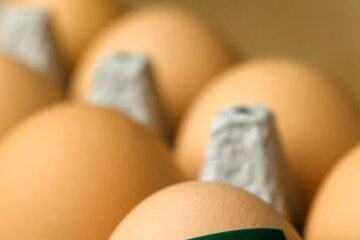 Organic Eggs11