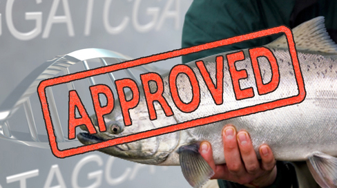 Ge Fish Approved 27298