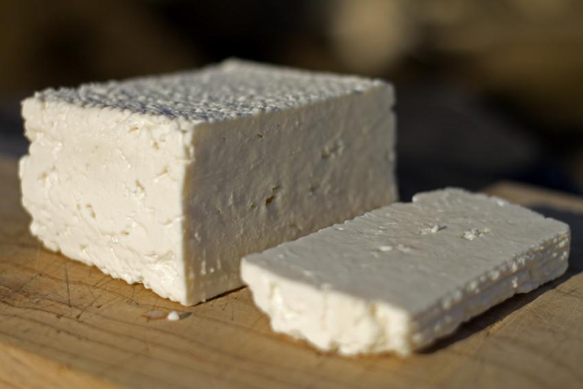 Jan Beddegenoodts bij bioboerderij De Volle Maan bio mijn natuur kaas geitenkaas feta geta