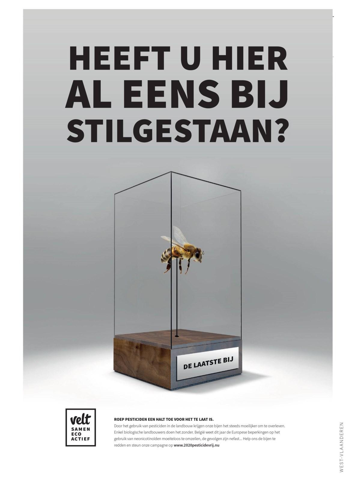 201907 Velt Solidariteitsprijs Advertentie